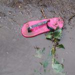 Pukkelpop 2011 begint dramatisch : Stellingen vielen om door felle windstoten en ook bomen waaide om